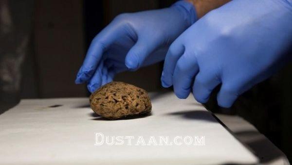 www.dustaan.com کشف ۴۵ مغز انسان در یک گور دسته جمعی!