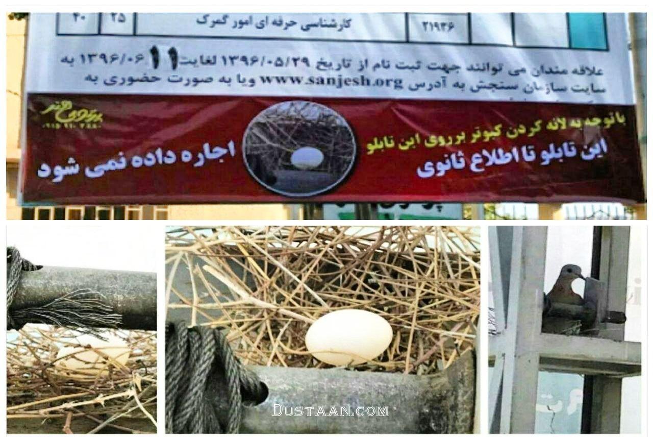www.dustaan.com این تابلو تا اطلاع ثانوی اجاره داده نمی شود!