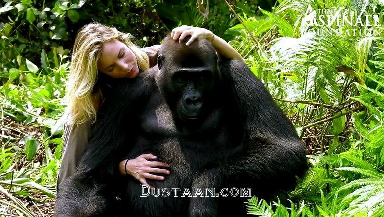 www.dustaan.com دوستی صمیمانه یک زن ثروتمند با گوریل! +تصاویر