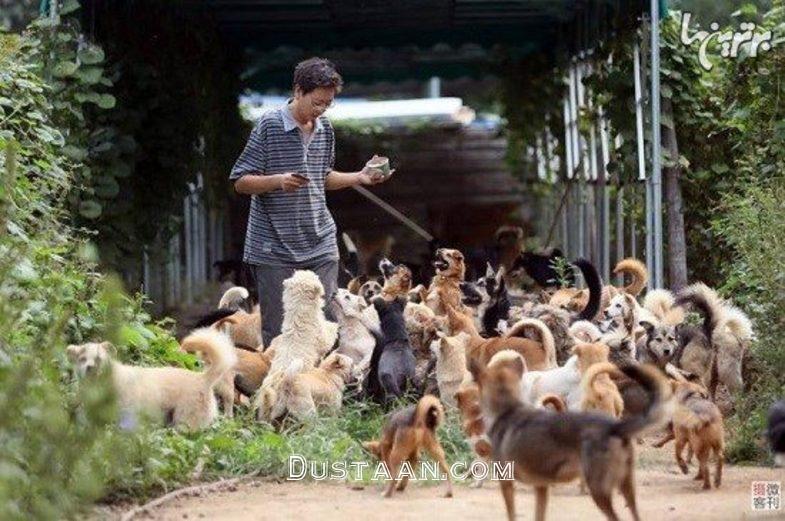 www.dustaan.com این مرد جوان، جان 700 سگ ولگرد را نجات داد +عکس