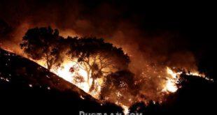 آتش سوزی 2 هزار هکتاری در جنگل های کالیفرنیا +تصاویر