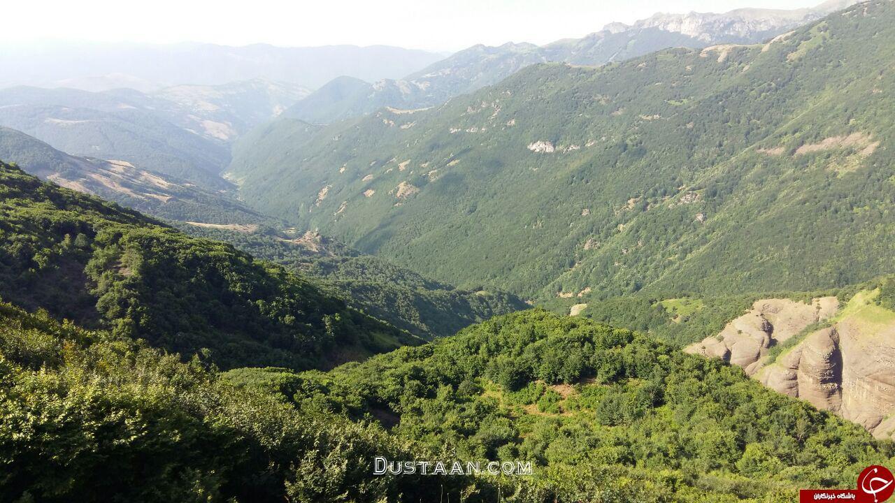 www.dustaan.com چشم انداز دیدنی جنگل ویکلیچ اردبیل +تصاویر
