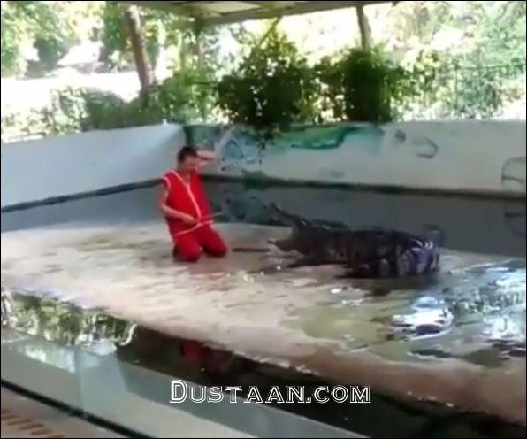 www.dustaan.com عاقبت وحشتناک شوخی احمقانه مرد جوان با تمساح! +فیلم