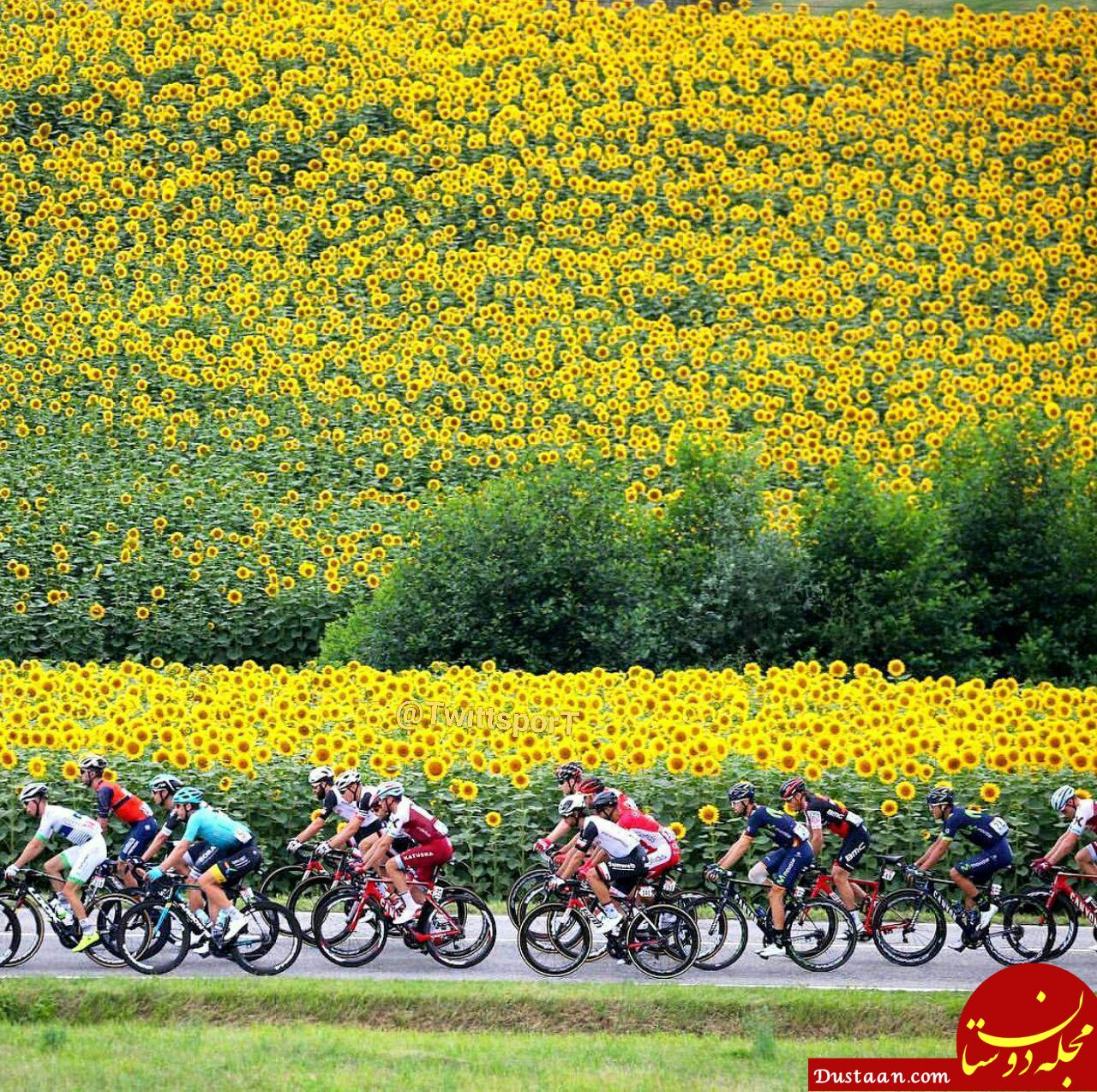 www.dustaan.com عکس حیرت انگیز از یک مسابقه دوچرخه سواری