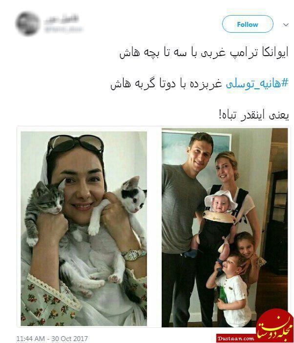واکنش طنز کاربران به خبر مرگ گربه هانیه توسلی + تصاویر