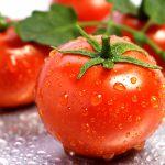 ۱۰ خاصیت شگفت انگیز گوجه فرنگی