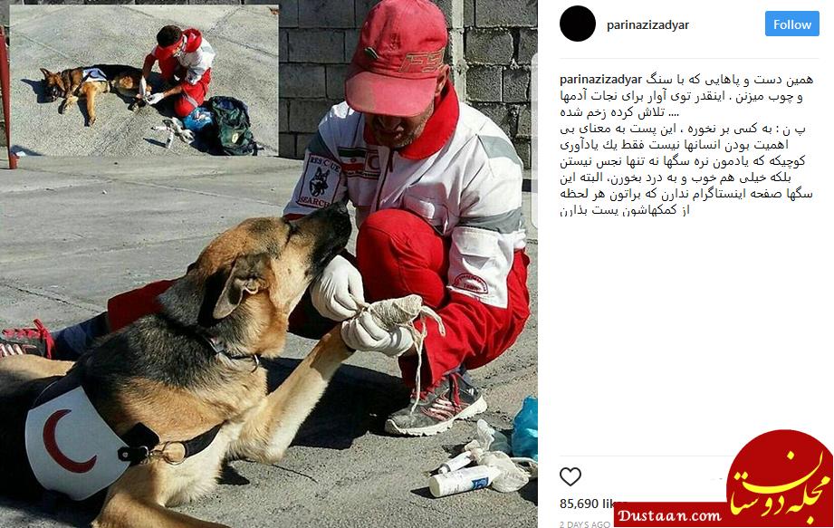 www.dustaan.com پریناز ایزدیار : سگ ها نجس نیستند! +عکس
