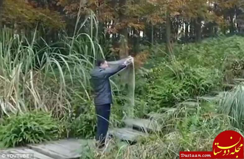 www.dustaan.com پارچه های شگفت انگیزی که انسان را نامرئی می کند! +تصاویر