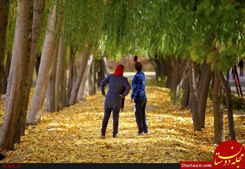 تصاویری زیبا از برگ ریزان پاییز اصفهان!