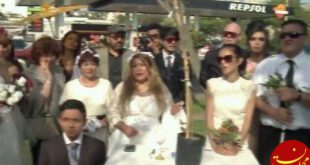 ازدواج گروهی زنان جوان با یک درخت