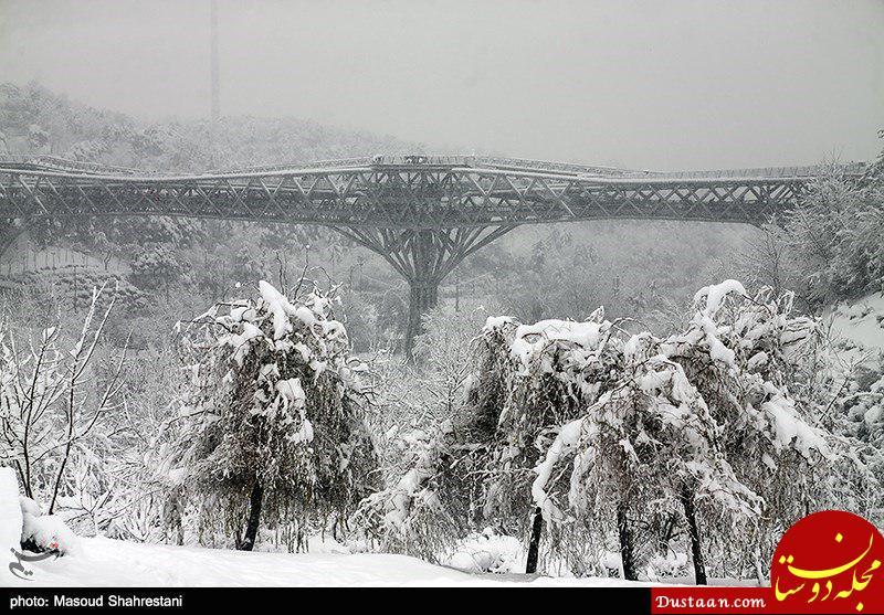 www.dustaan.com واکنش نیویورک تایمز به اقامه نماز طلب باران در ایران!