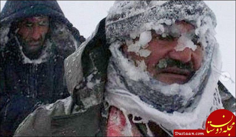 www.dustaan.com واکنش اینستاگرامی بیژن بنفشه خواه به مرگ یک کولبر +عکس