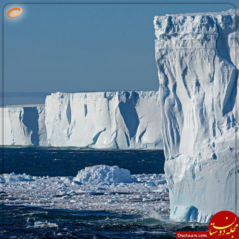 www.dustaan.com قطب شمال و جنوب چه تفاوت هایی با هم دارند؟