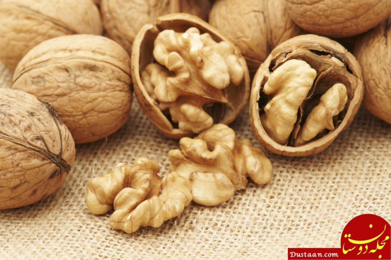 Выращивание грецкого ореха из семян ЧАСТНЫЙ ДОМ. САД 74