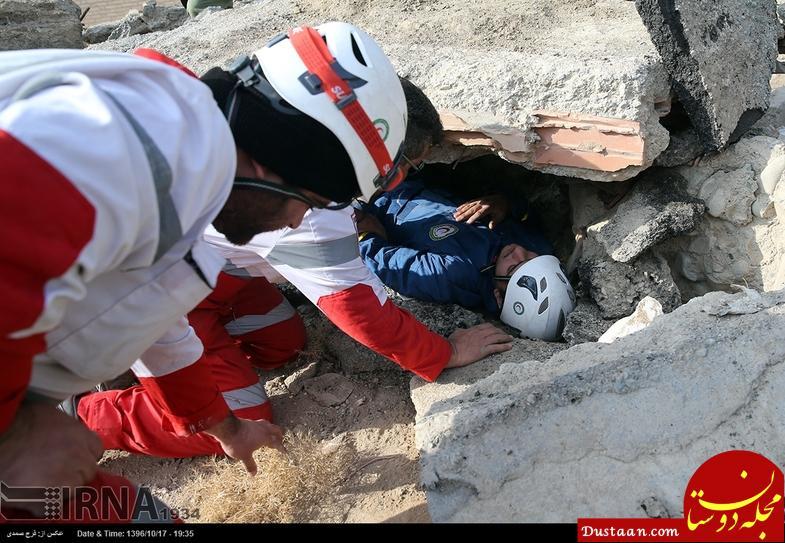 www.dustaan.com آموزش سگ های زنده یاب در زلزله ها +تصاویر