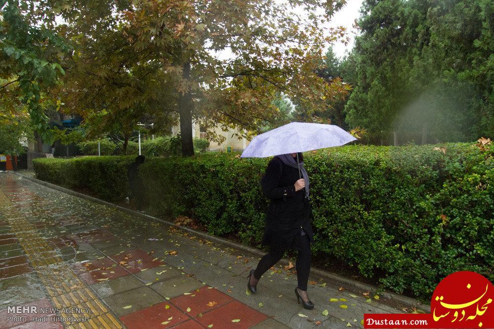 www.dustaan.com منتظر بارش باران و برف باشید!