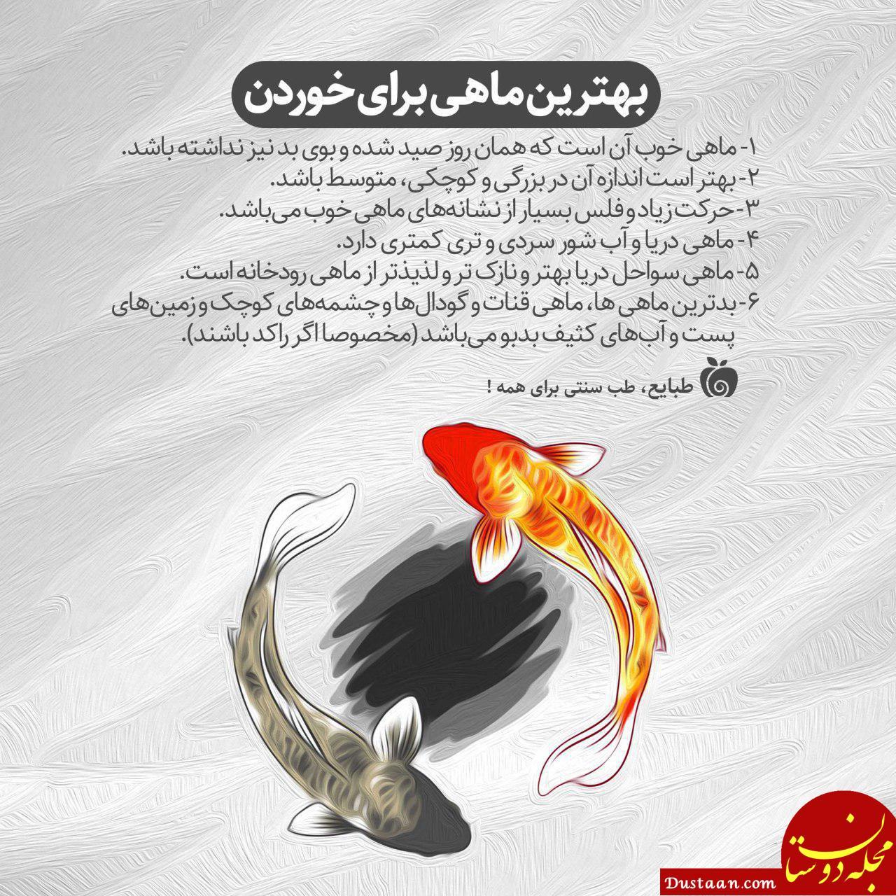 www.dustaan.com بهترین ماهی برای خوردن چه ویژگی هایی دارد؟