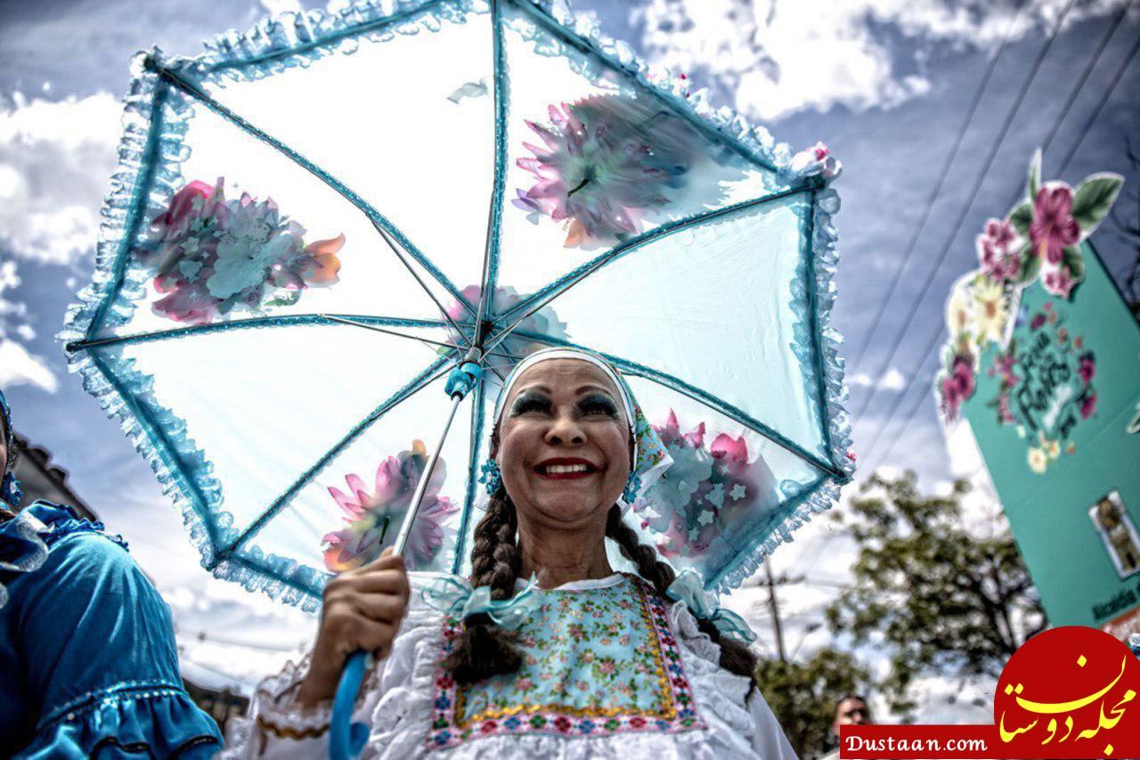 جشنواره گل های کلمبیا در عکس روز نشنال جئوگرافیک