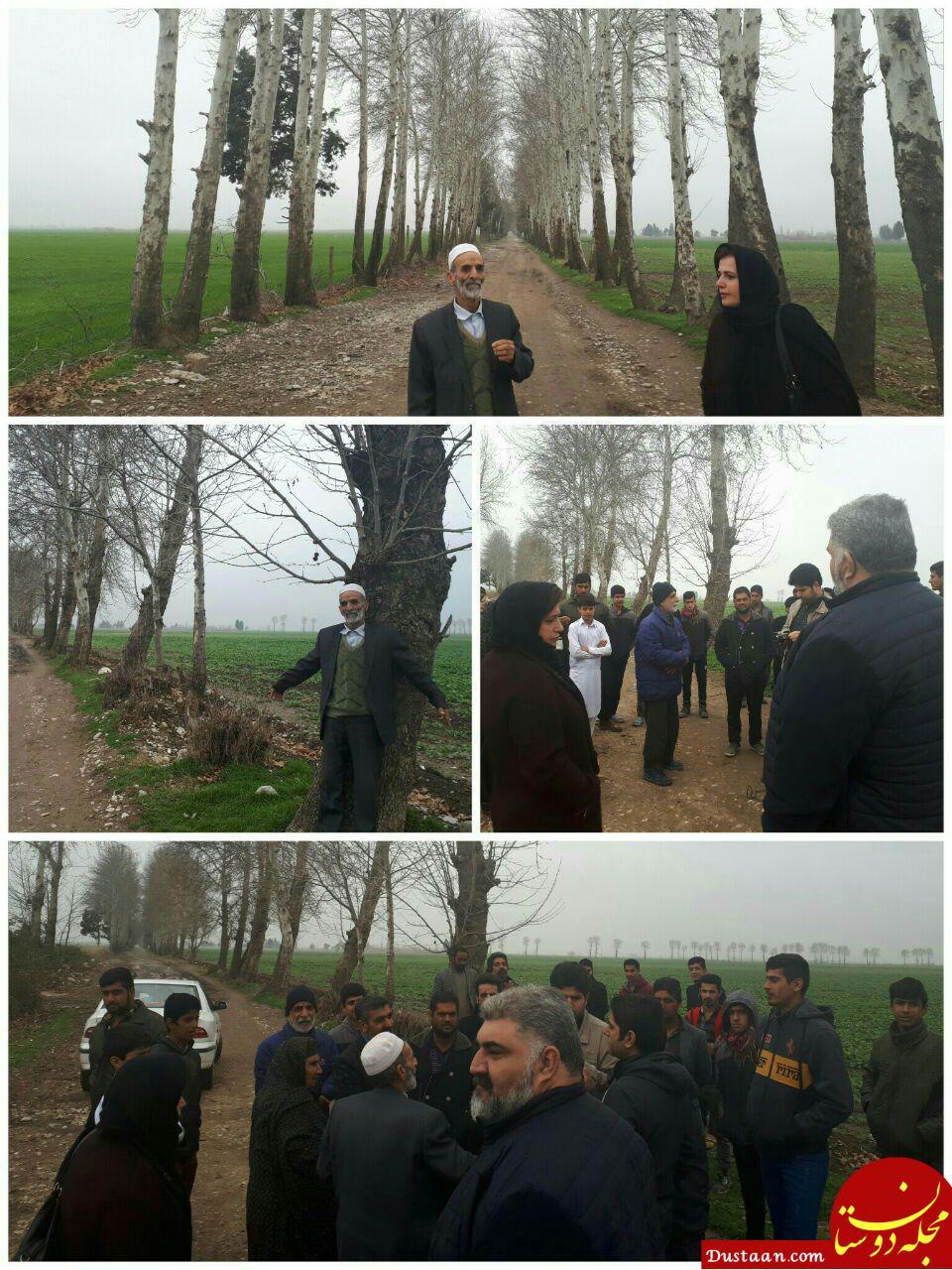www.dustaan.com مردم روستای «شرکت صحرا» مانع قطع درختان شدند! +عکس
