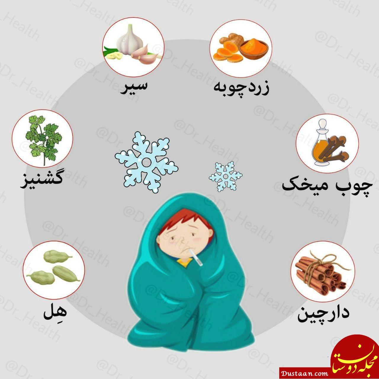 www.dustaan.com ادویههای مفید برای فصل زمستان را بهتر بشناسید