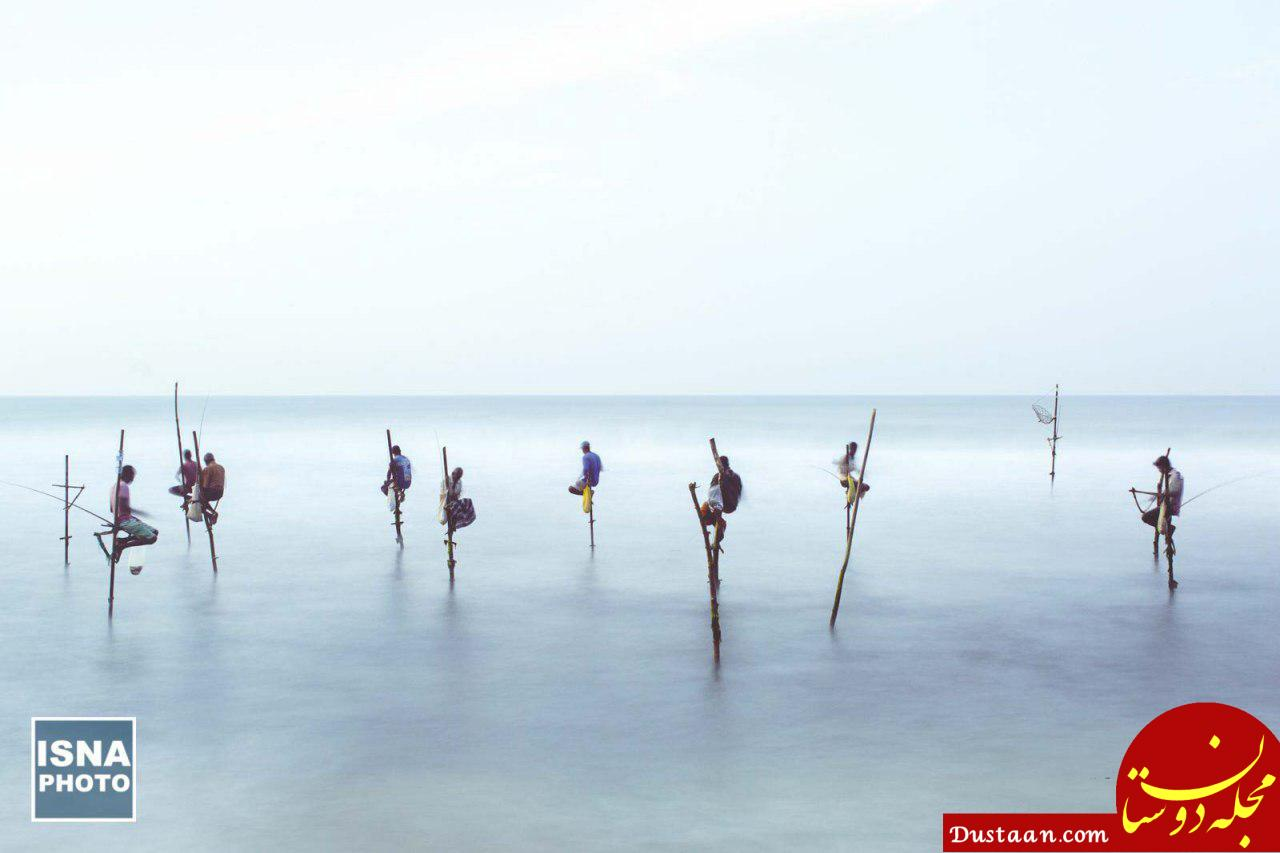 www.dustaan.com ماهیگیران بومی سریلانکا در عکس روز نشنال جئوگرافیک