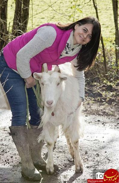 www.dustaan.com این زن و شوهر جوان زبان حیوانات را می فهمند! +عکس