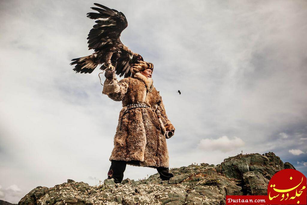 www.dustaan.com عقاب شکارچی قزاق در عکس روز نشنال جئوگرافیک