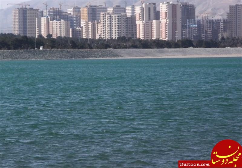 www.dustaan.com از تماس با پرندگان دریاچه چیتگر خودداری کنید!