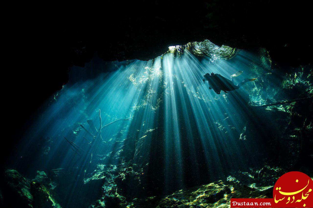 www.dustaan.com عکس روز نشنال جئوگرافیک از یک غواص اسکوبا در حال شنا