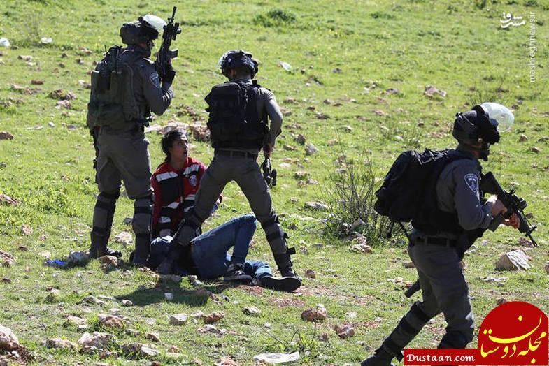 www.dustaan.com امدادرسانی زن شجاع فلسطینی در مقابل کفتارها +تصاویر