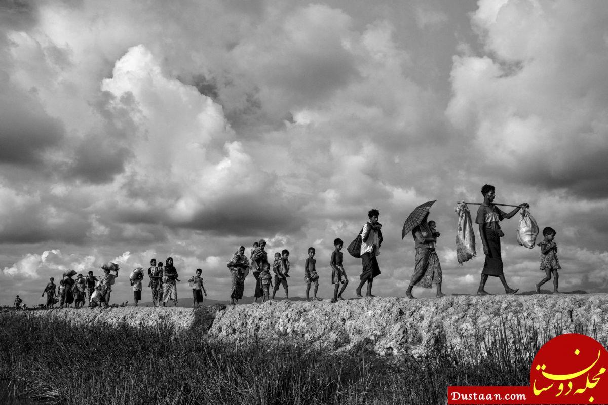 www.dustaan.com برندگان مسابقه عکاسی ورلد پرس 2018 +تصاویر