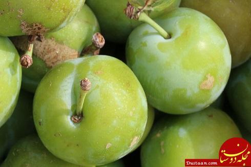www.dustaan.com با خواص درمانی و فواید گوجه سبز بیشتر آشنا شوید