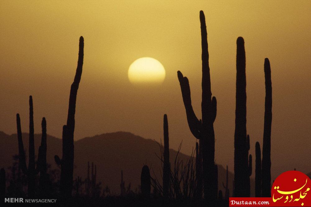 www.dustaan.com تصاویری دیدنی از زیبایی های زمین