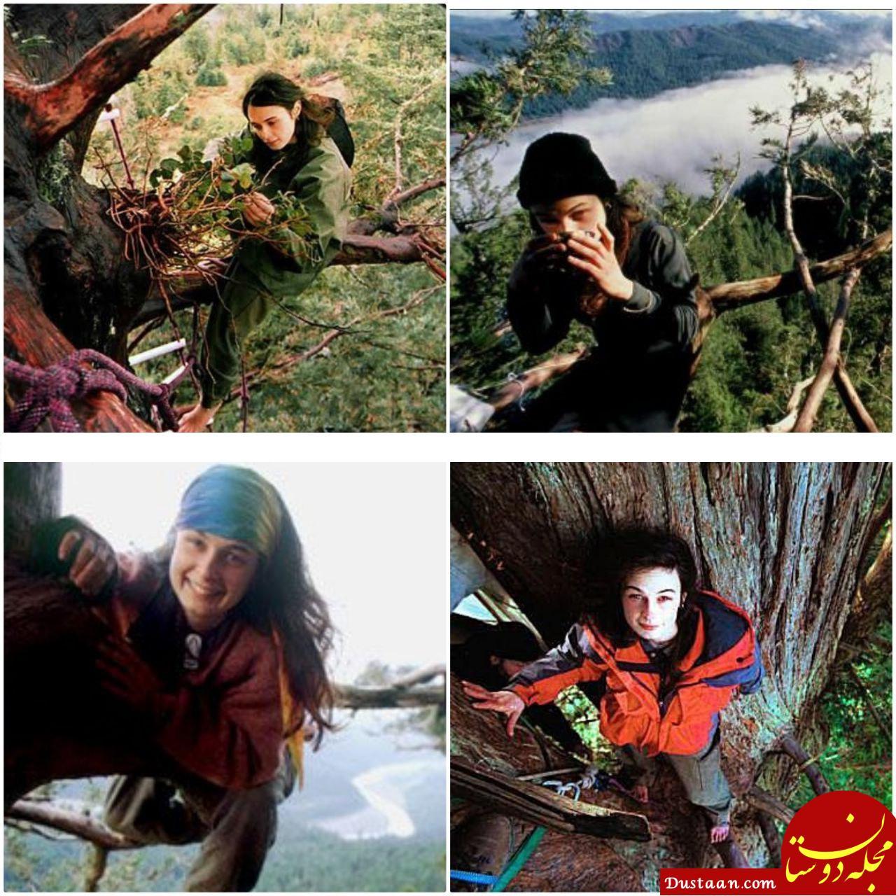 www.dustaan.com دختری جوان که 738 روز روی درخت زندگی کرد! +تصاویر