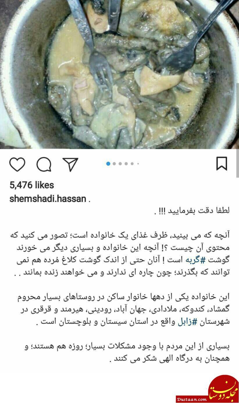 www.dustaan.com تکذیب پخت گوشت گربه در سیستان و بلوچستان به دلیل فقر شدید +عکس