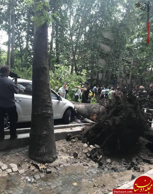 www.dustaan.com خسارت باد شدید در تهران! +عکس