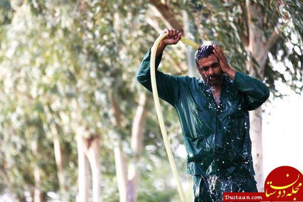 www.dustaan.com پیشبینی دمای 50 درجه در استان بوشهر