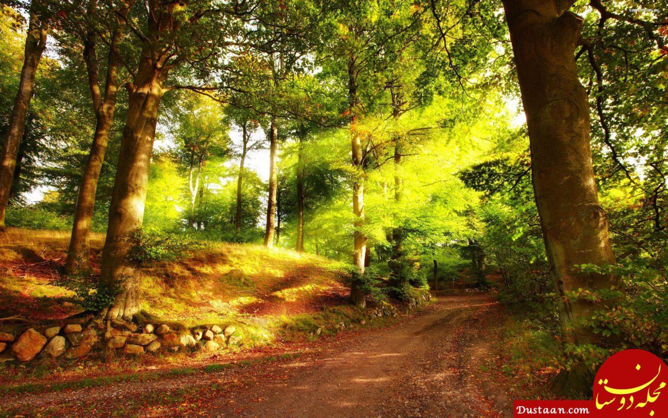 www.dustaan.com ساعت ۱۴:۳۷ روز پنجشنبه ۳۱ خرداد تابستان شروع میشود