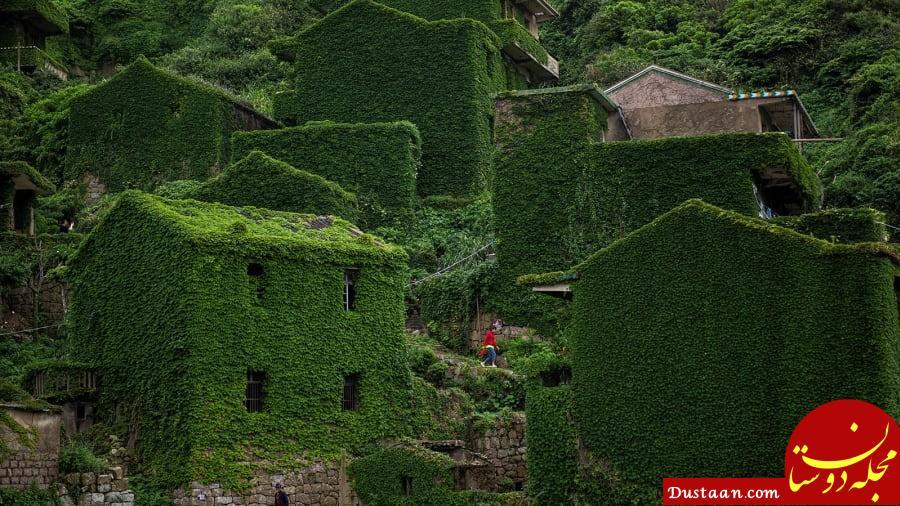 www.dustaan.com روستای متروکه در محاصره گیاهان خود رو +تصاویر