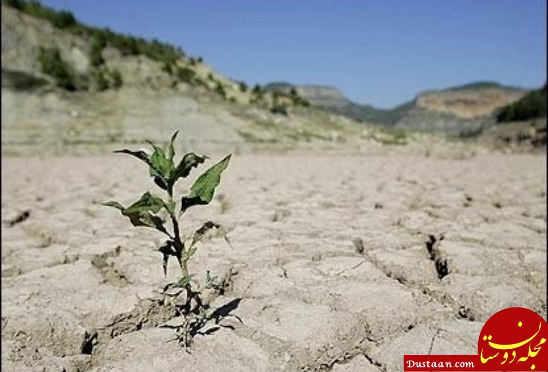 www.dustaan.com ایران درحال خشک شدن است/استان های شمالی دچار خشکسالی شده اند
