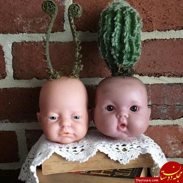 www.dustaan.com ترسناک ترین گلدان هایی که تا به حال ندیده اید +تصاویر