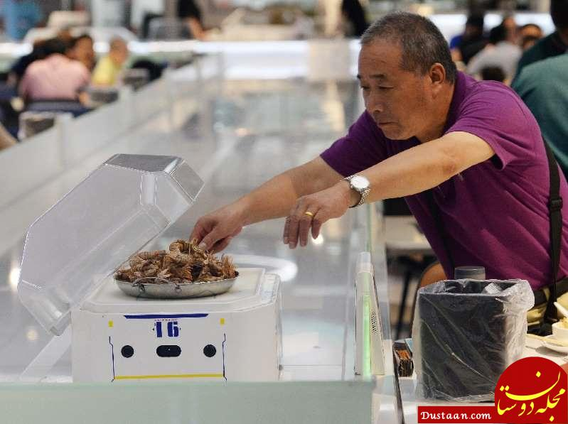 www.dustaan.com ربات های کوچکی که جایگزین گارسون ها می شوند! +تصاویر