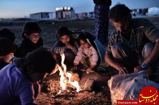 www.dustaan.com همراهی با تحریم ها علیه ایران موجب بحران غذایی در عراق می شود