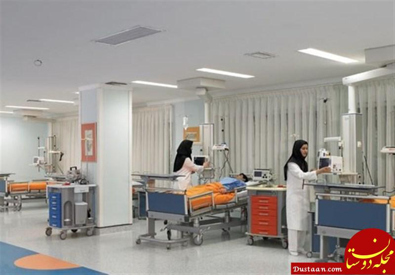 www.dustaan.com ماجرای وجود موش در بیمارستان فقیهی شیراز