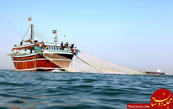 www.dustaan.com تایید رسمی ماهیگیری چینی ها در آب های عمیق ایران در دریای عمان