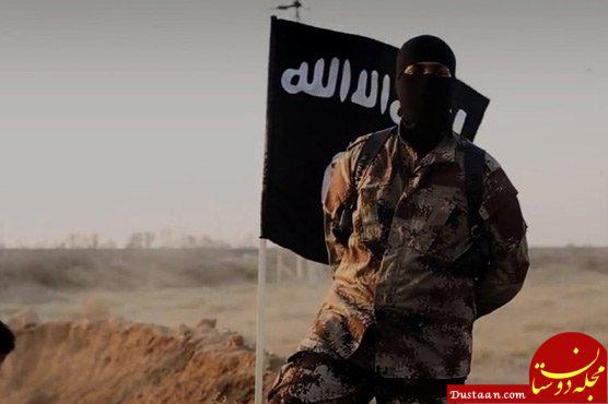 www.dustaan.com شکست عملیات جدید داعش در شرق سوریه