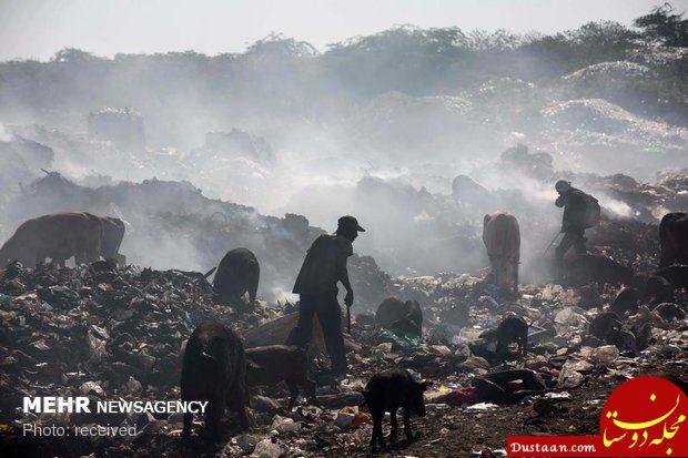 www.dustaan.com زندگی تلخ در میان زباله ها +عکس
