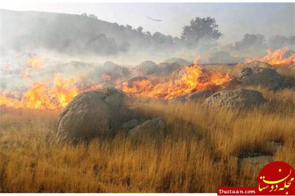 www.dustaan.com آتش به 50 هکتار مرتع در استان گلستان آسیب زد
