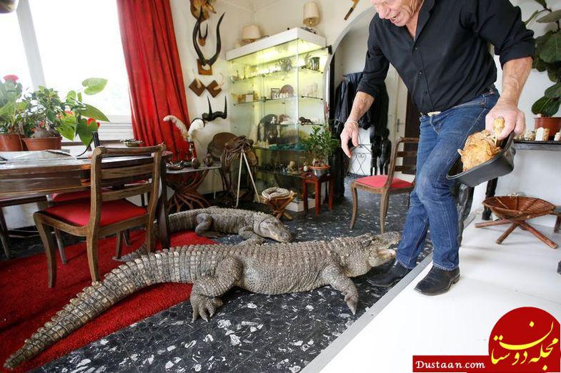 www.dustaan.com نگهداری از 400 حیوان وحشی در خانه! +عکس