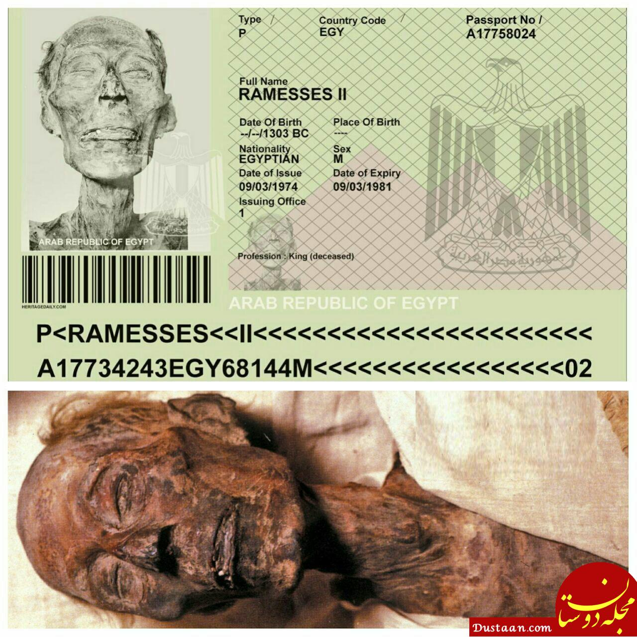راهکار دولت مصر برای حفظ مومیایی با ارزش! +عکس
